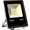Светодиодный прожектор BIOM 100W S2-SMD-100-Slim 6500 К 220V IP65